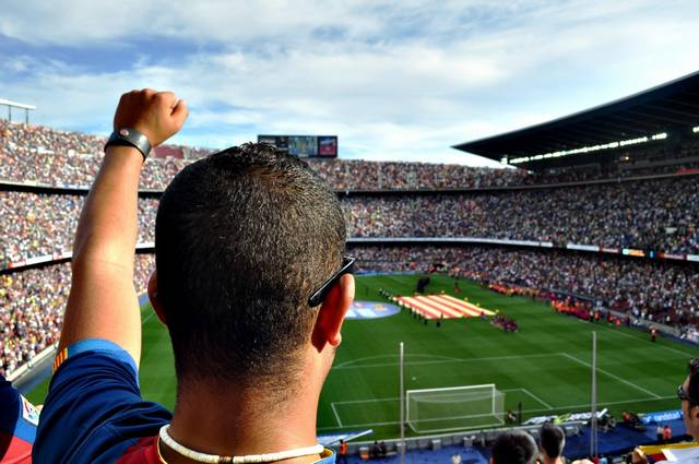 man fan person football soccer stadium people winner 1342728.jpgd