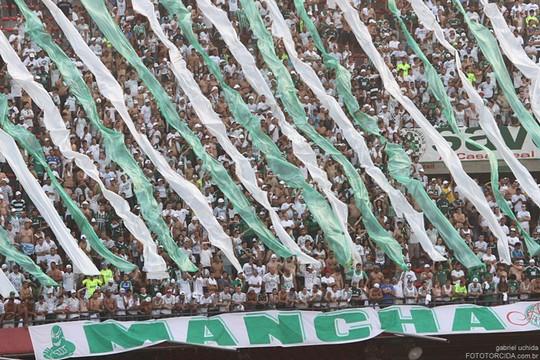 Le Mouvement en Amérique du Sud . - Page 5 Saopaulo-palmeiras_16