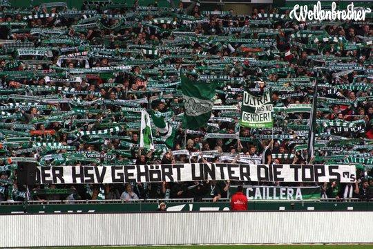 Werder Bremen Vs Hsv